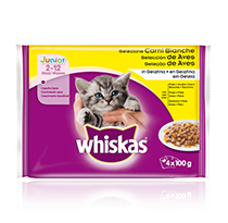 WHISKAS Kitten